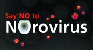 Norovirus = Food-borne Outbreaks