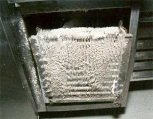 Food Safety Certification MN hints-dirty coils